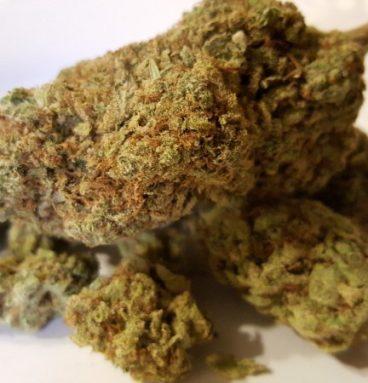 Higher Power Cannabis Strain
