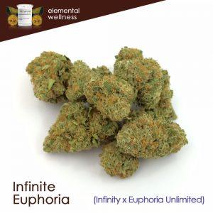 Infinite Euphoria Marijuana Strain