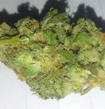Lemon Kush Marijuana