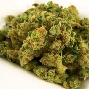 Green Crack Marijuana Strain